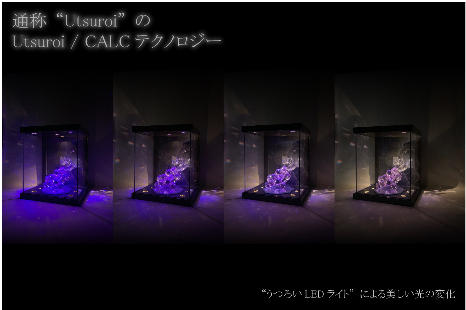 "BC_NM-""Utsuroi"" glass case SJ"
