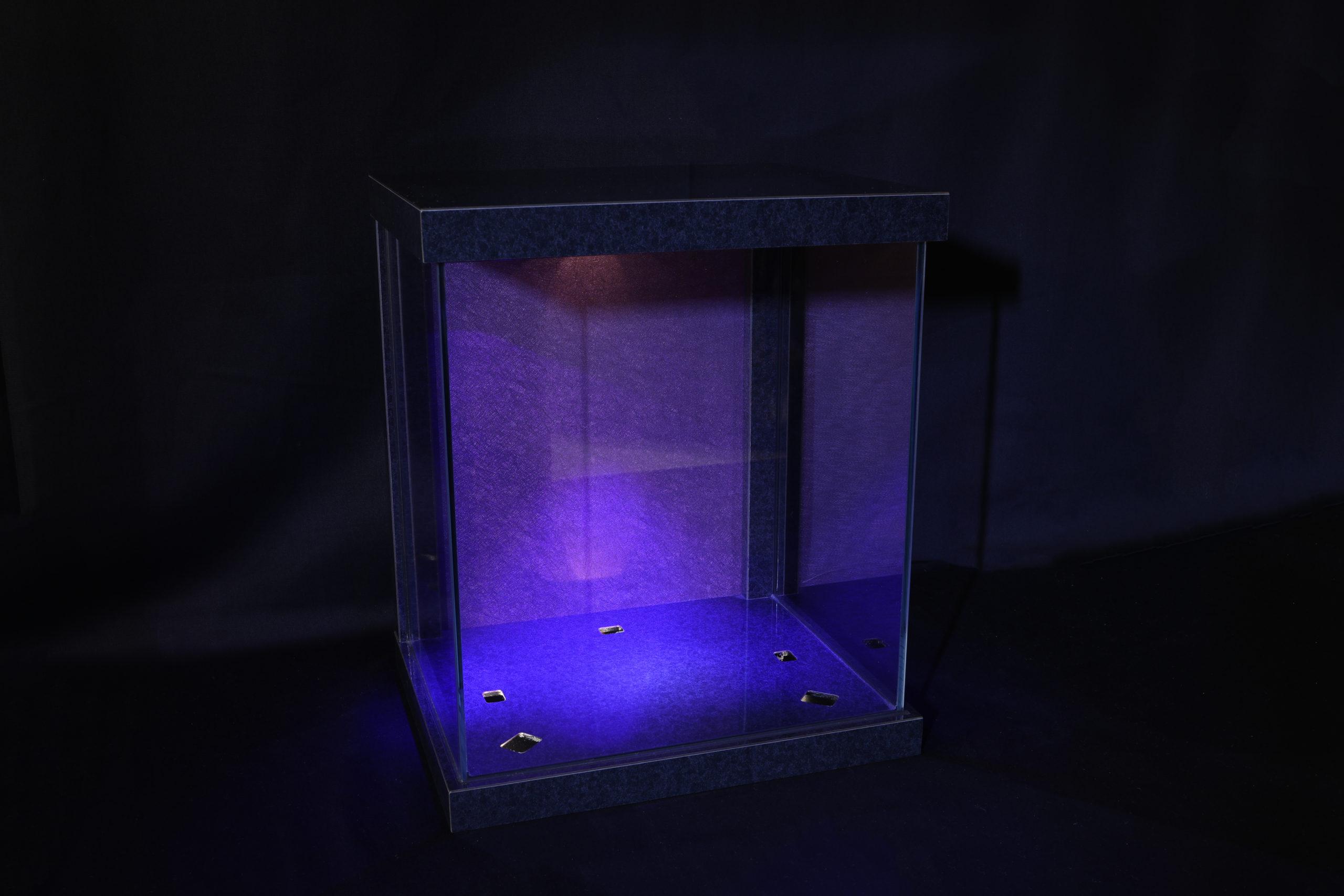 """BC_NM-""""Utsuroi"""" glass case L"""