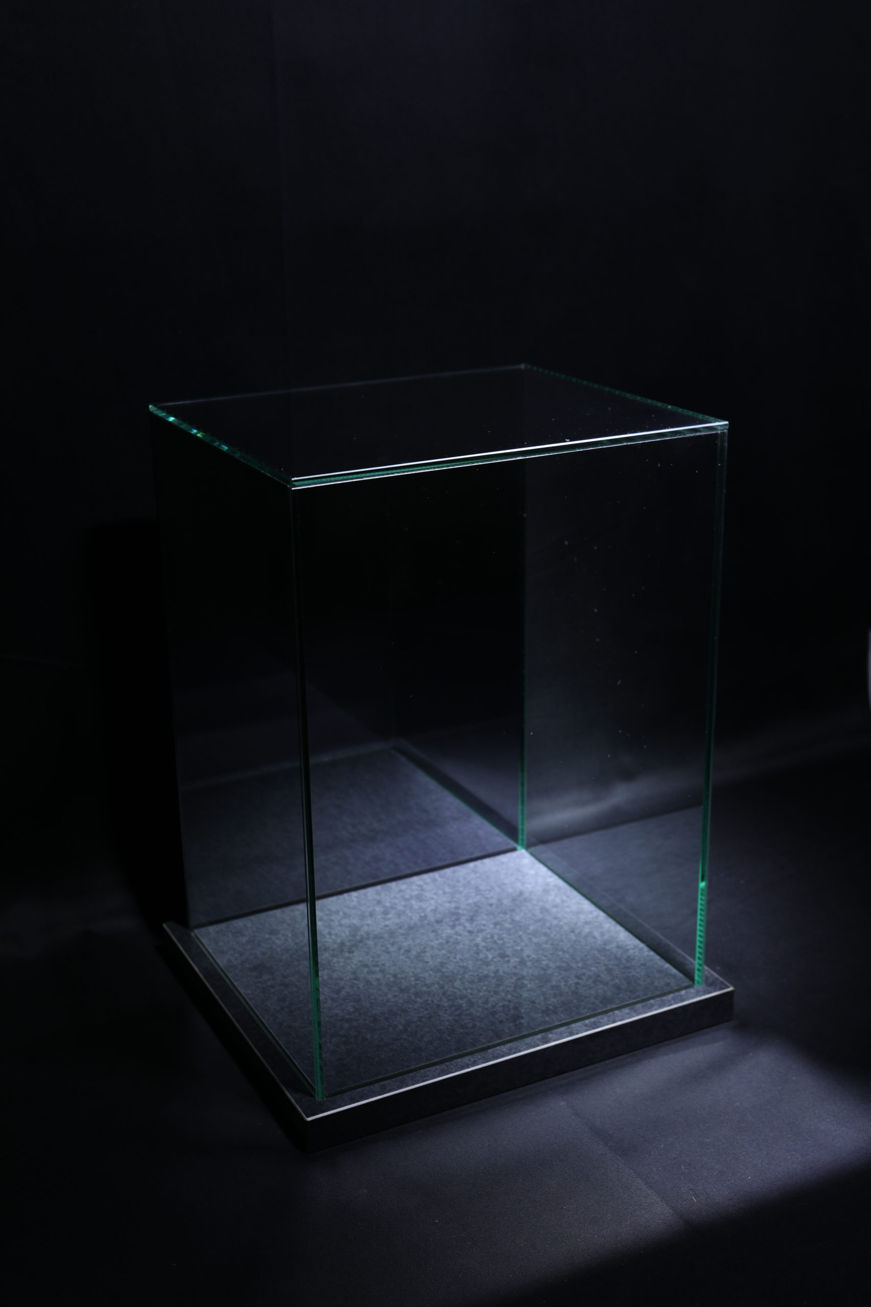 BC_NM-Premium glass case_Nyoirin Kannon